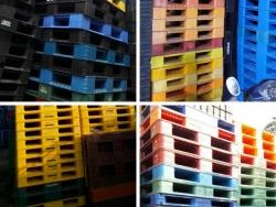 Kinh nghiệm mua pallet nhựa cũ giá rẻ Bắc Ninh